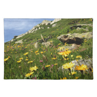 Amazing! Alpine flowers Placemat