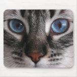 """""""Amazing Blue Eyes"""" Kitty Mouse Pad"""
