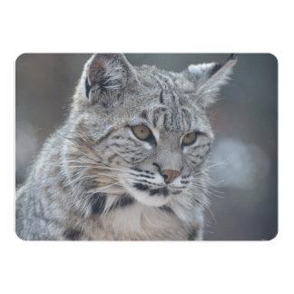 Amazing Bobcat 13 Cm X 18 Cm Invitation Card