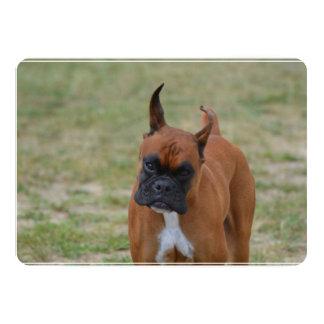 Amazing Boxer Dog 13 Cm X 18 Cm Invitation Card