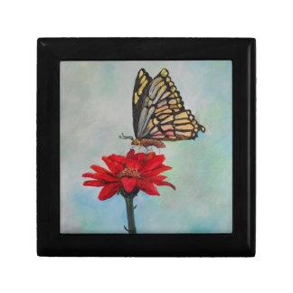Amazing Butterfly Art! Gift Box