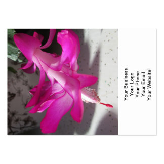 Amazing Christmas Cactus Pack Of Chubby Business Cards