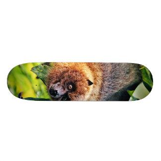 amazing Flight dog - bat Skate Board Deck