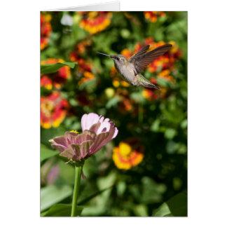 Amazing Hummingbird Photo Greeting Card