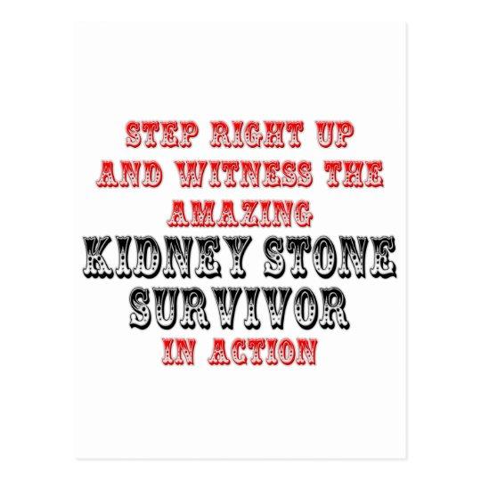 Amazing Kidney Stone Survivor In Action Postcard