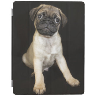 Amazing Little Pug Puppy iPad Cover