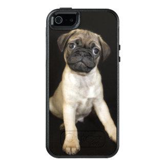 Amazing Little Pug Puppy OtterBox iPhone 5/5s/SE Case