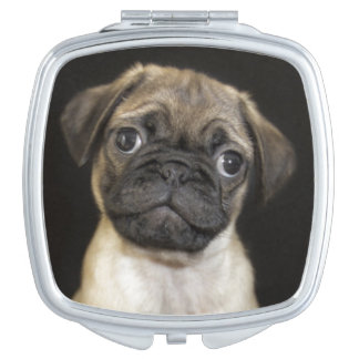 Amazing Little Pug Puppy Vanity Mirror