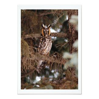 Amazing Owl Photo Custom Invitations
