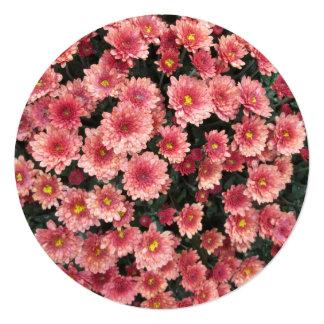 "Amazing Pink Chrysanthemum Cluster 5.25"" Square Invitation Card"