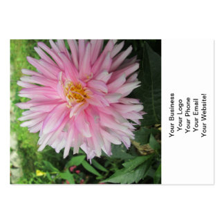 Amazing Pink Dahlia Flower Pack Of Chubby Business Cards