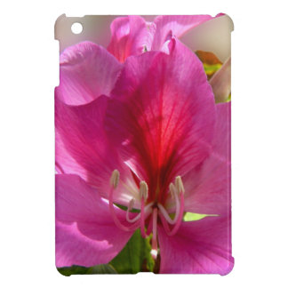 Amazing pink tropical tree flower cover for the iPad mini