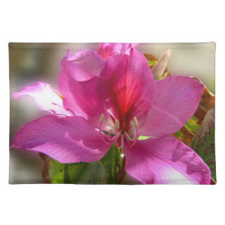 Amazing pink tropical tree flower placemat
