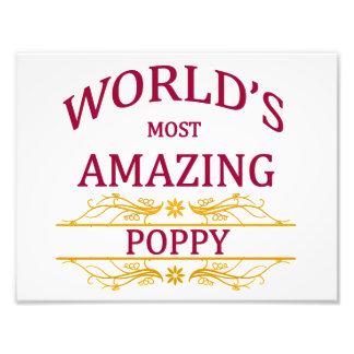 Amazing Poppy Photo Art