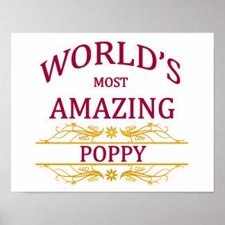 Amazing Poppy Poster