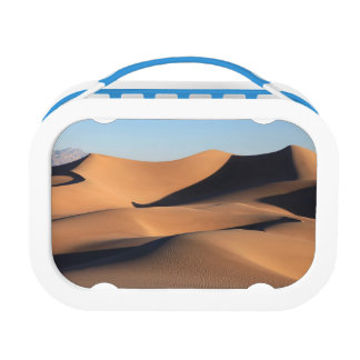 Amazing Shadows of Desert Lunchboxes