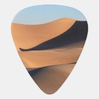 Amazing Shadows of Desert Plectrum