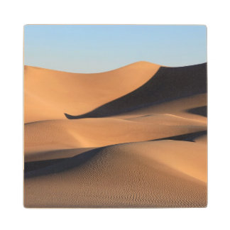 Amazing Shadows of Desert Wood Coaster