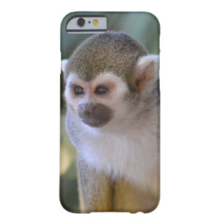 Amazing Squirrel Monkey Barely There iPhone 6 Case