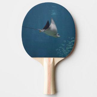 Amazing Stingray Ping-Pong Paddle