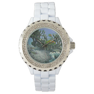 Amazing Vibrant Coral Reef Watch
