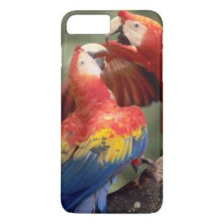 Amazon, Brazil. Pair of Scarlet Macaws (Ara iPhone 8 Plus/7 Plus Case