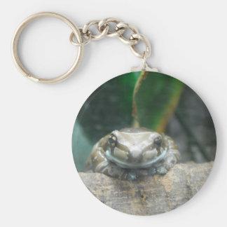 Amazon Milk Frog Keychain