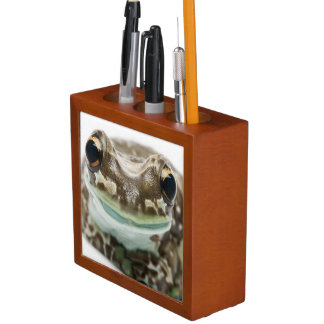 Amazon Milk Frog - Trachycephalus Resinifictrix Desk Organiser