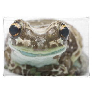 Amazon Milk Frog - Trachycephalus Resinifictrix Place Mats