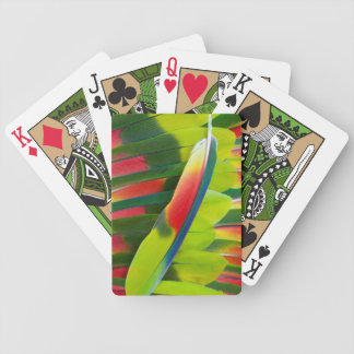 Amazon Parrot Feather Still Life Bicycle Playing Cards