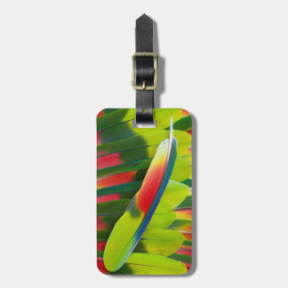 Amazon Parrot Feather Still Life Luggage Tag