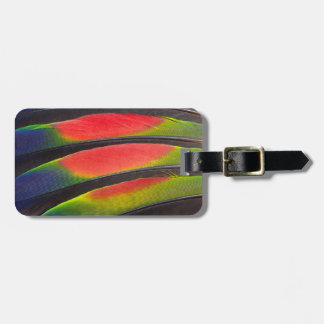 Amazon parrot feathers luggage tag