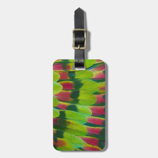 Amazon Parrot Green Feather Design Bag Tag