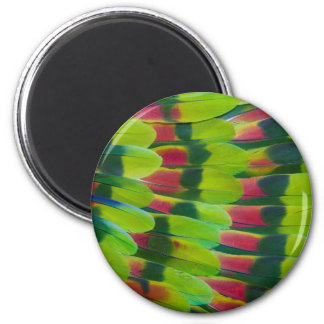 Amazon Parrot Green Feather Design Magnet