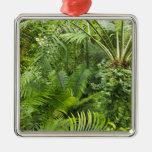 Amazon Rainforest, Amazonia, Brazil 2 Christmas Tree Ornament