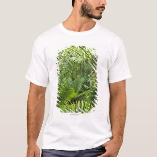 Amazon Rainforest, Amazonia, Brazil 2 T-Shirt