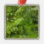 Amazon Rainforest, Amazonia, Brazil Silver-Colored Square Decoration