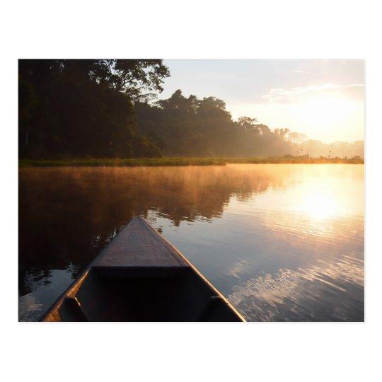 Amazon rainforest sunrise postcard
