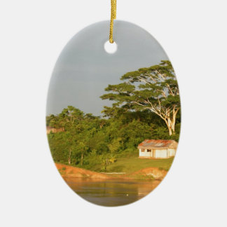 Amazon river bank christmas ornament