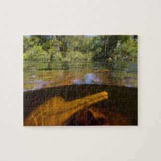 Amazon River Dolphins (Inia geoffrensis) Ariau Jigsaw Puzzle