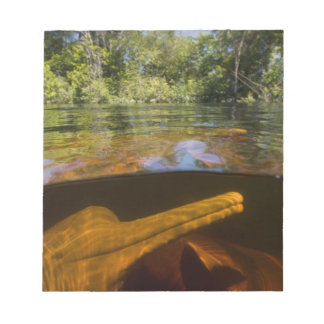 Amazon River Dolphins (Inia geoffrensis) Ariau Notepad