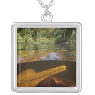 Amazon River Dolphins (Inia geoffrensis) Ariau Silver Plated Necklace