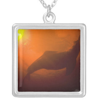 Amazon River Dolphins or Botos (Inia Silver Plated Necklace