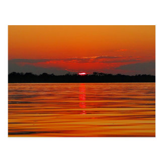 Amazon River Post Card