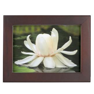 Amazon Water Lily (Victoria Amazonica) Flower Keepsake Box