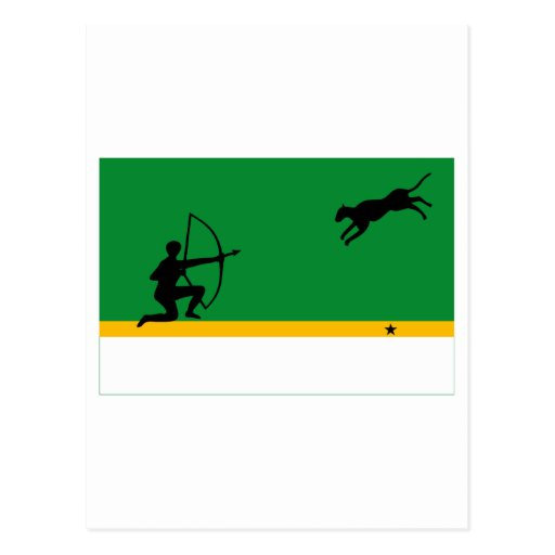 Amazonas Flag Post Cards