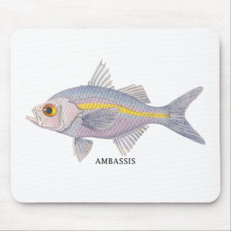 AMBASSIS MOUSE MAT