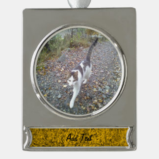 Amber colored Grass Silver Plated Banner Ornament