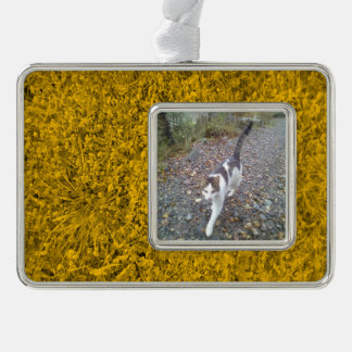 Amber colored Grass Silver Plated Framed Ornament