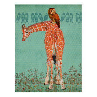 Amber Giraffe & Owl Feathers Post Cards